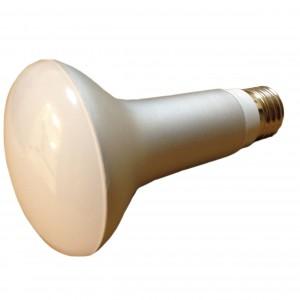 LED par38 7W daylight